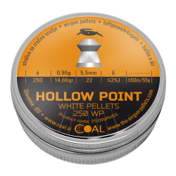 Hollow Point 250 WP 5.5 / .22